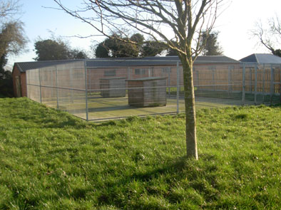 Dublin Dog Kennels
